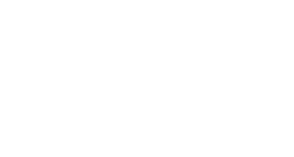 Electric Vehicle Solutions